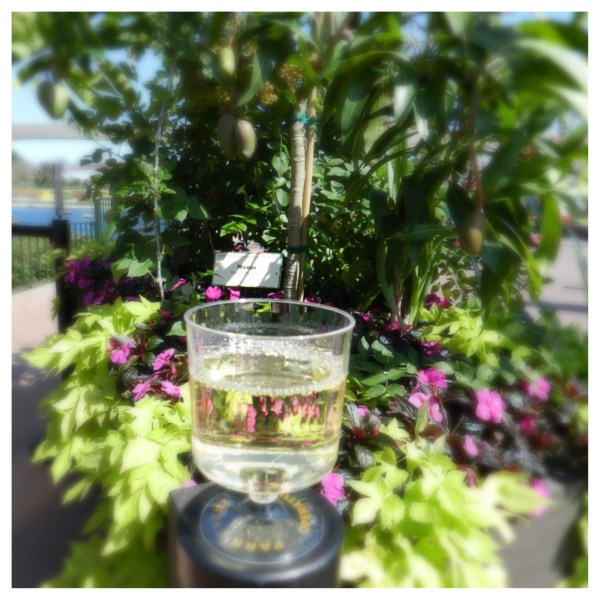 Wine Pairings at Epcot
