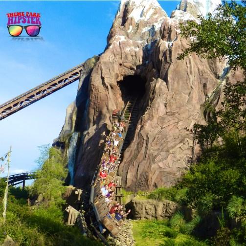 Expedition Everest at Disney's Animal Kingdom roller coaster.