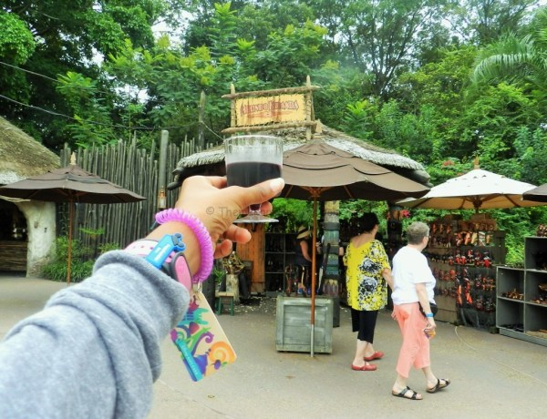 African Wine at Epcot Food and Wine Festival