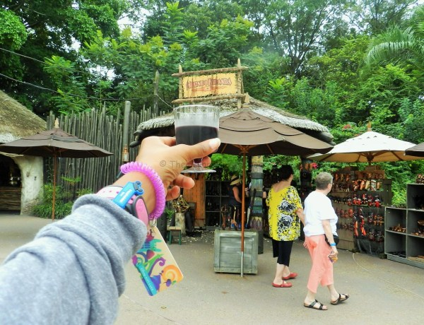 African Wine at Epcot