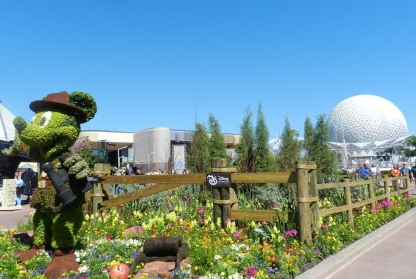 Walt Disney epcot flower and garden festival with topiary Mickey Mouse.