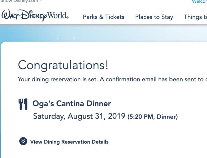 My Disney Experience