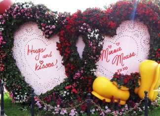 Disneyland Sweethearts Night