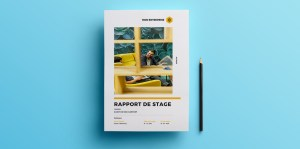 modele rapport stage word