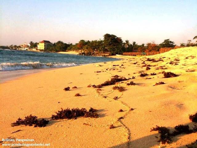 Beach. Bum. Bolinao
