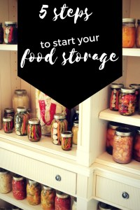 Are you ready to start being more prepared for your family in case of emergencies? Read below for 5 steps to start your Food Storage or Stockpiling food.