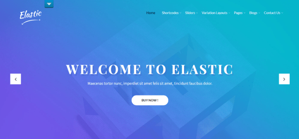 SKT Elastic WordPress Theme
