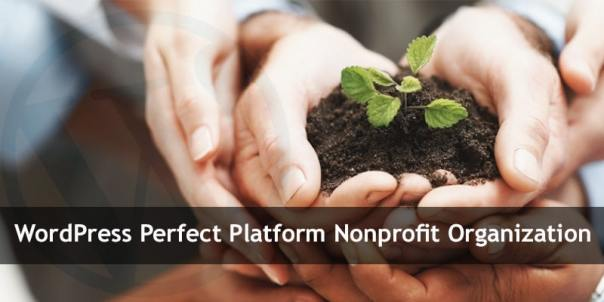 WordPress Is the Perfect Platform for Your Nonprofit Organization