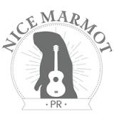 Nice Marmot pr