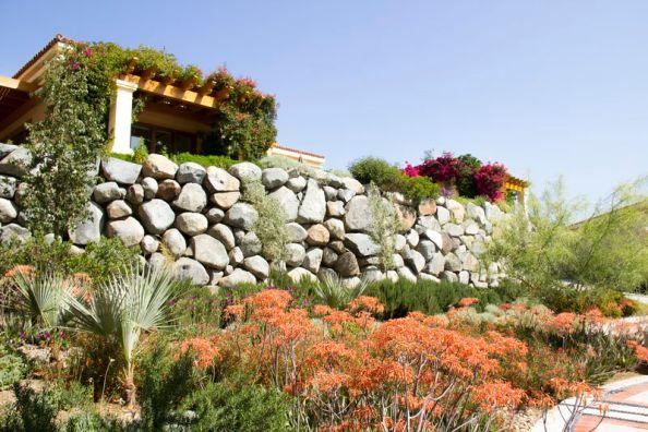 Photos courtesy of Baja Tourism