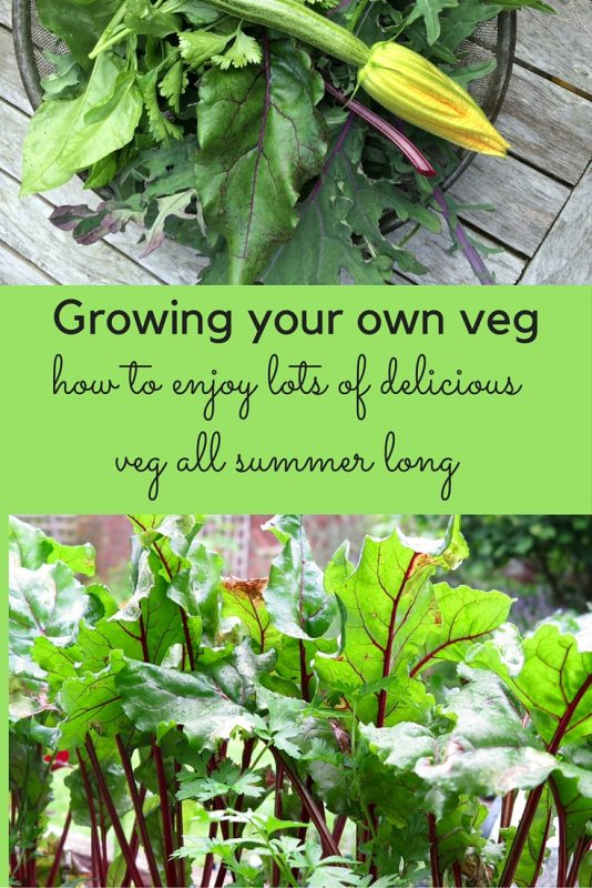 How to have the best harvests of allotment and grow-your-own veg