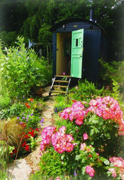 A Plankbridge shepherd's hut with a contrasting door