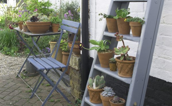 Upcycled ladder display for pots