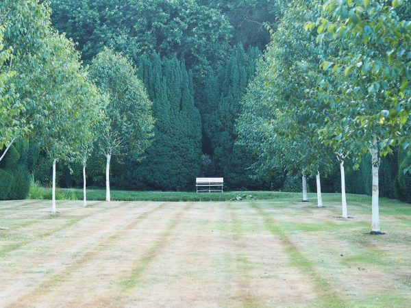 Garden seating as a focal point