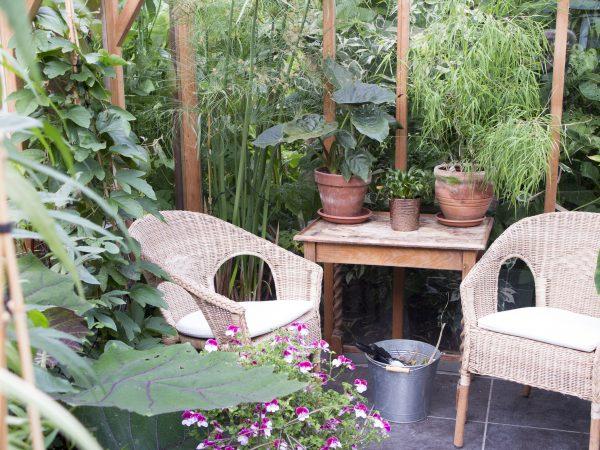 A dual-purpose greenhouse