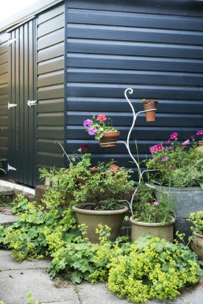 Paint your shed dark as a background