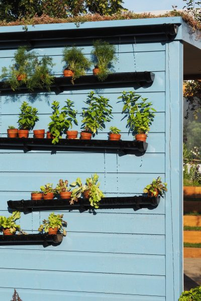 Self-watering guttering system at RHS Hampton Court