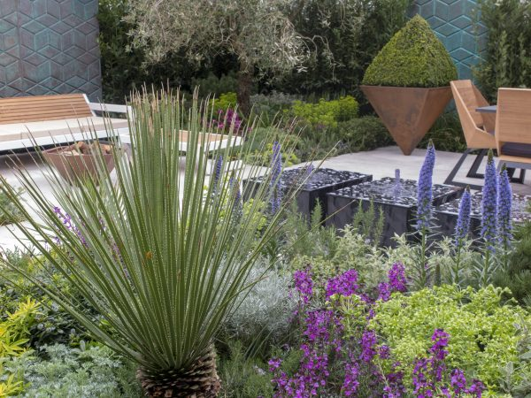 Tom Hill's On Point garden at the Ascot Garden Show