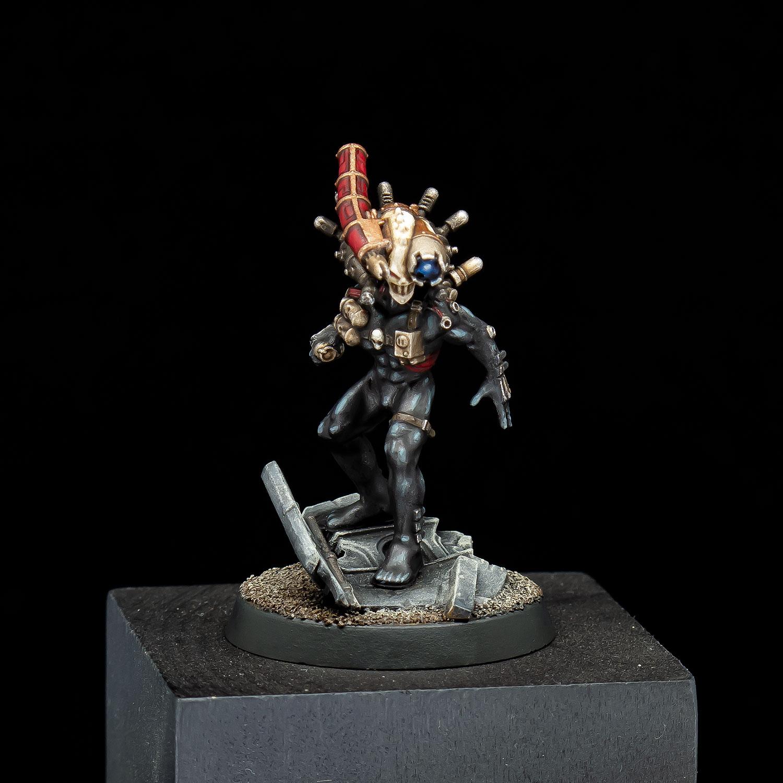 Cullexus Assassin