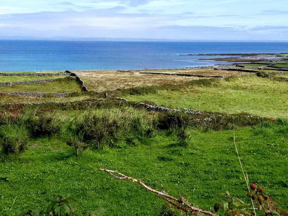 Stone walls criss-crossing over grass, patched in different shades of green. The land eventually becomes ocean. The photo is taken on Inis Mor (one of the Aran Islands) in Western Ireland