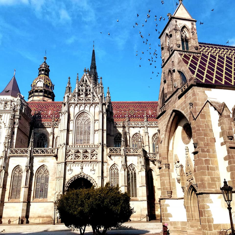 Exterior of St. Elisabeth's Cathedral in Kosice, Slovakia with birds flying overhead and no clouds in the sky.  The building is extremely ornate with detailed spires and carvings everywhere.  The outside of the windows are adorned with iron carvings.  There is a small shrub in the foreground.  The roof of the cathedral is a reddish color with detailed tile work.