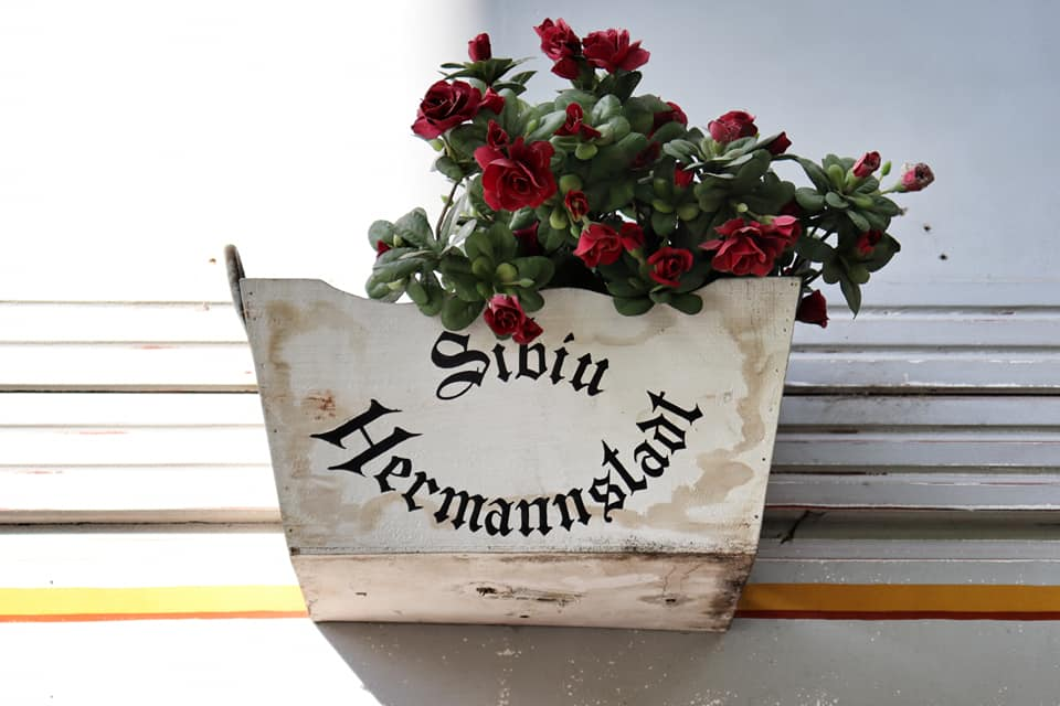White flower box with red flowers that says Sibiu Hermannstadt