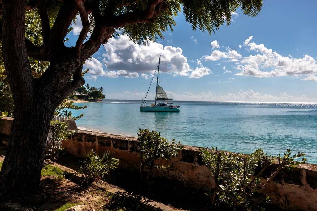 Sailboat seen through the trees off the coast of Barbados.