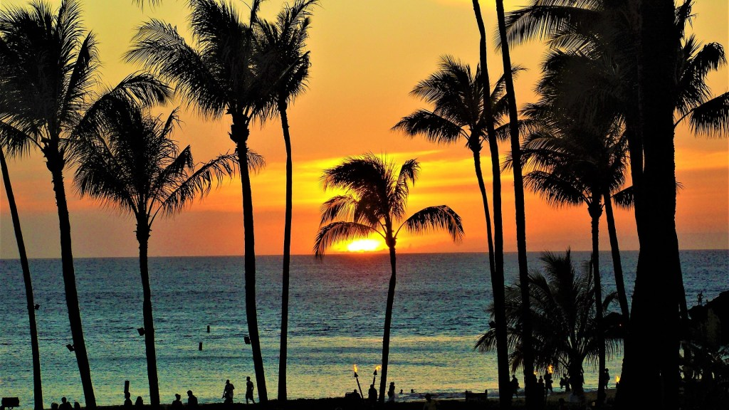 Orange and yellow sunset in Hawai'i with palm tree silhouettes in the foreground.