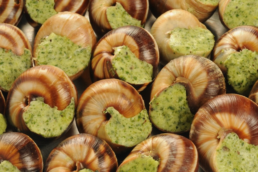 Close-up of escargots de bourgogne, a traditional French food.
