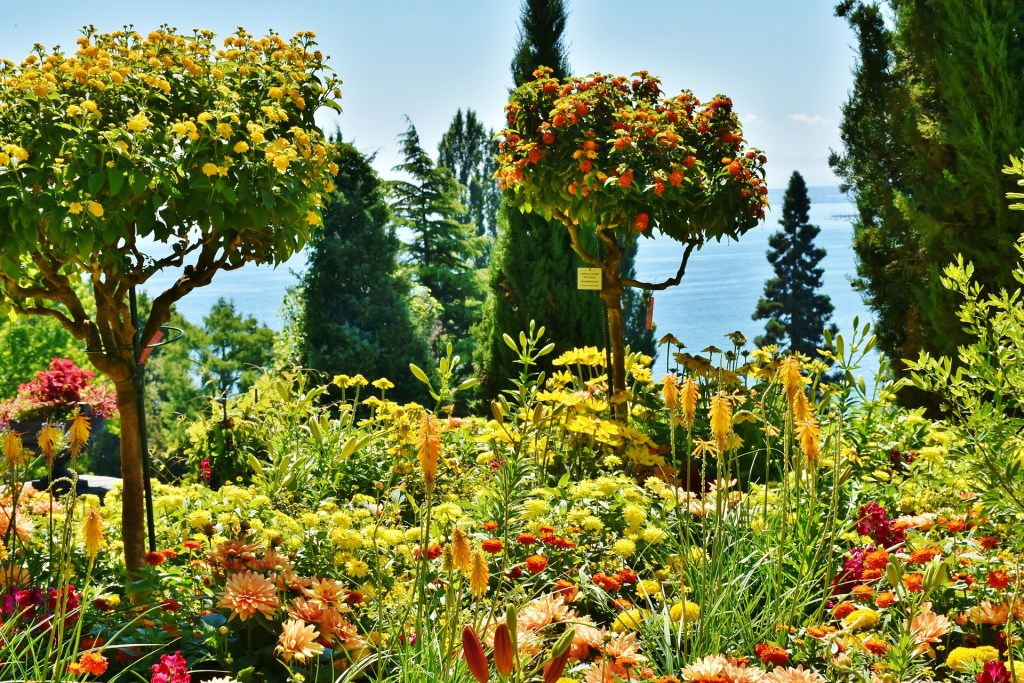 Many flowers in the German island of Mainau, one of Germany's most magical palces.
