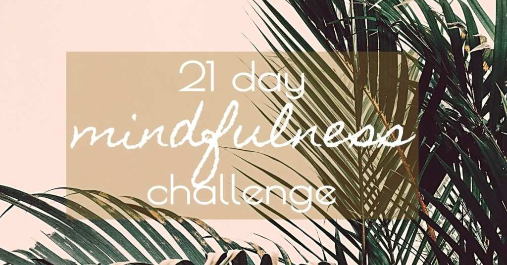21 Day Mindfulness Challenge Graphic with palm leaves