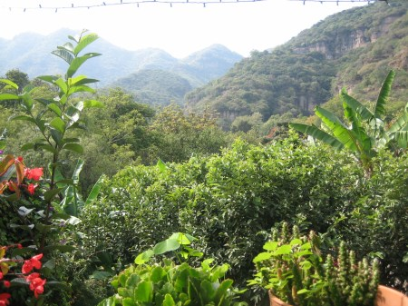 The view from a restaurant in Malinalco, Mexico