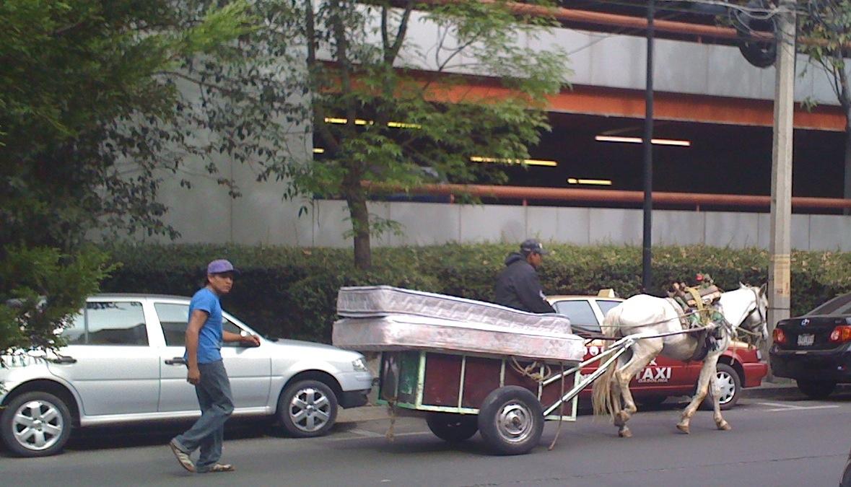Gas Vendors In Mexico City