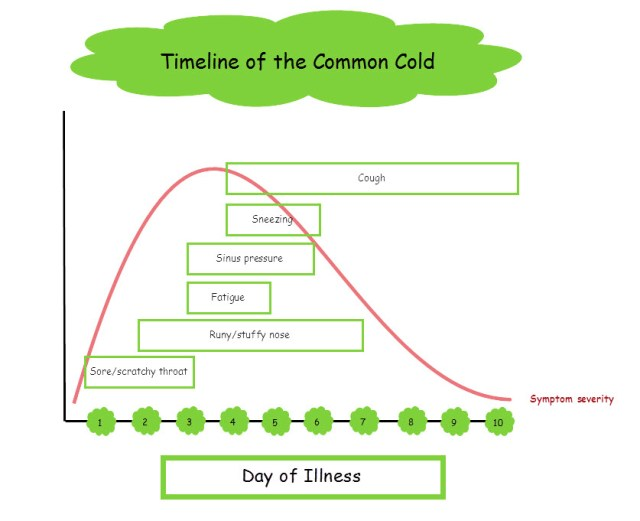 Timeline Common Cold