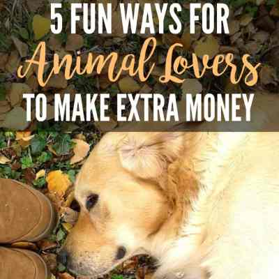 5 Ways Animal Lovers Can Make an Extra $1000 a Month