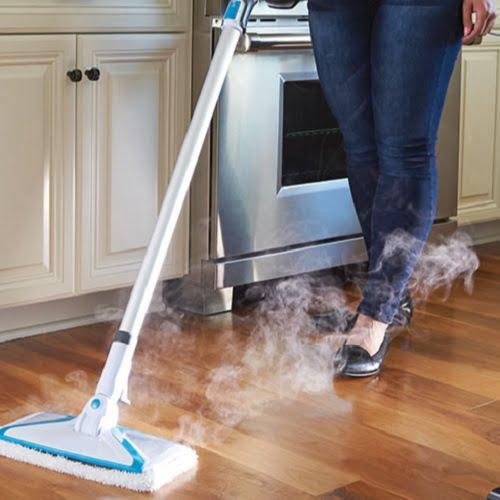 Virus Destroying Steam Mop