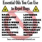 List of Bug Repellent Essential Oils