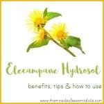 Elecampane Hydrosol Benefits, Tips & How to Use