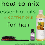 How to Mix Essential Oils with Carrier Oils for Hair