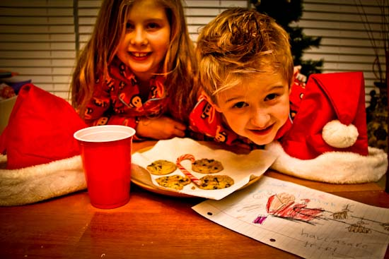 Christmas cookies for Santa