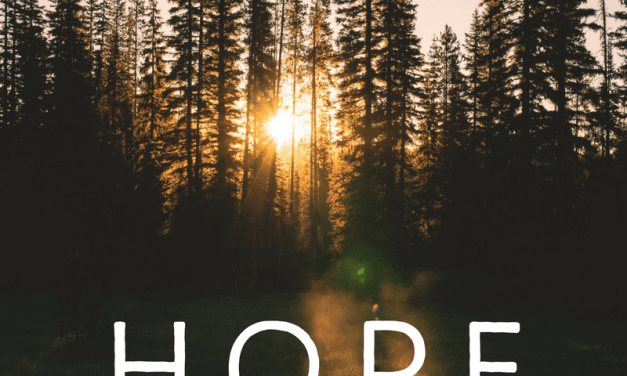 Wrapping up Our Series: Hope for the Hurting Mom: