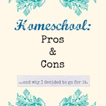 Homeschool: Pros & Cons and why I decided to go for it. http://www.TheModernMary.com