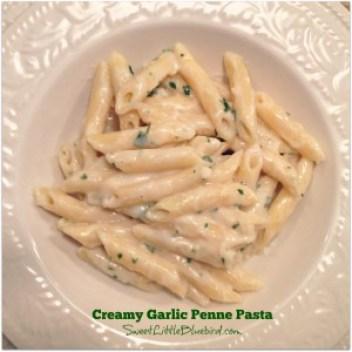 creamy garlic penne pasta 6a