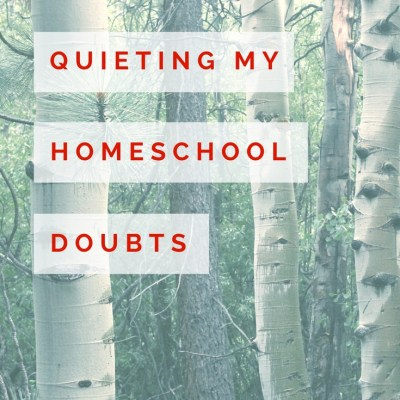 Homeschool Doubts