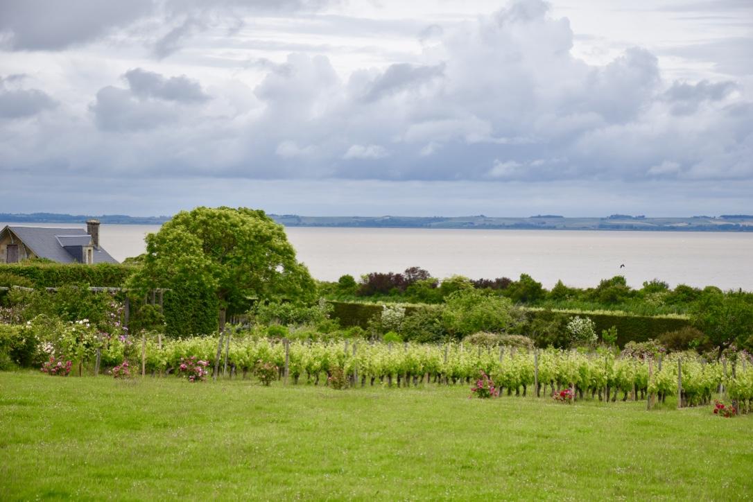 chateau-loudenne-and-gironde-estuary