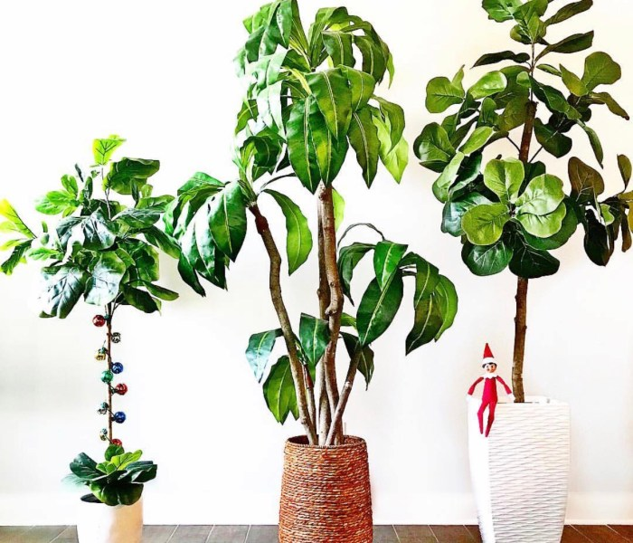Home Decor Trees