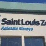 Top 10 Reasons to Visit the St. Louis Zoo