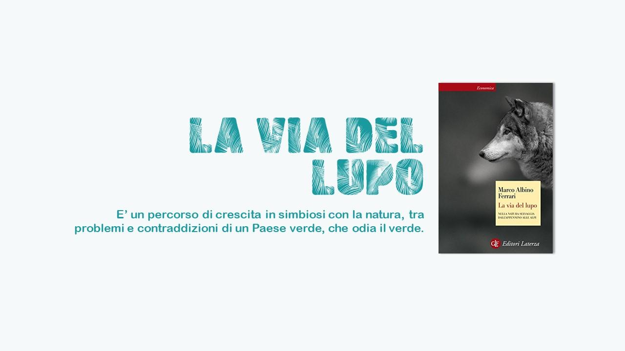 La via del lupo cinque libri per scoprire l'italia