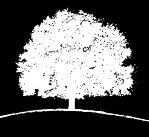The Moody Center logo