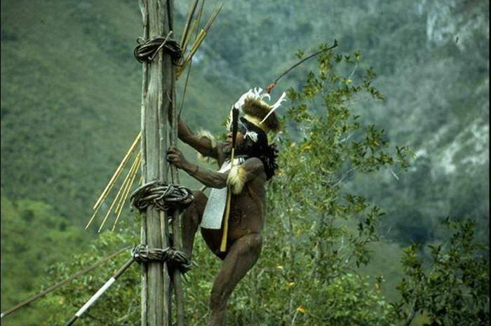 Dani Tribe